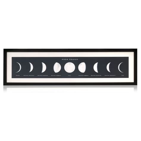 Lunar Phases Wall