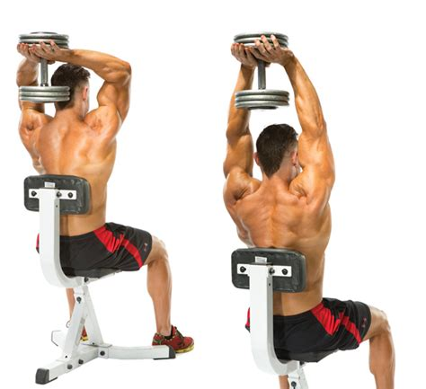 tricep bench press dumbbell exercises to get perfectly shaped triceps gym guider