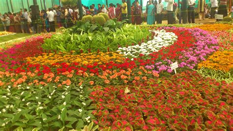 lalbagh flower show 2012 complete bangalore tourism
