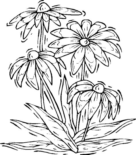Coloring Page Nature by Printable Nature Coloring Pages Coloring Home