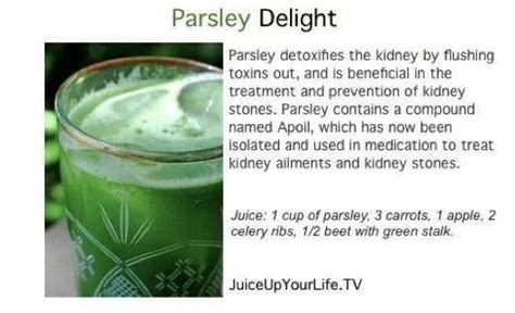 Parsley Detox Smoothie Recipe by Parsley Kidney Detox Juice Me Detox And