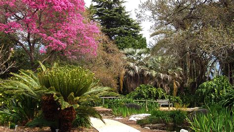 Los Angeles Botanical Garden La County Arboretum And Botanic Garden Guide And Tips Travel Frizemedia