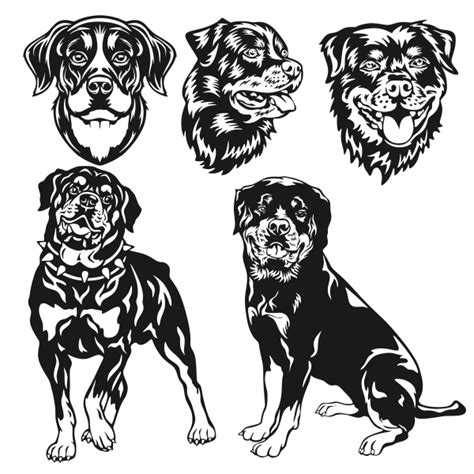 how to cut rottweiler rottweiler cuttable design