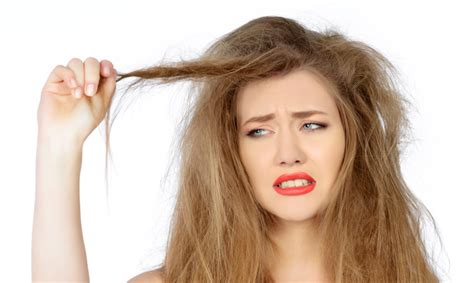 women 58 has very dry hair dry frizzy hair how to fix katrina elliskatrina ellis