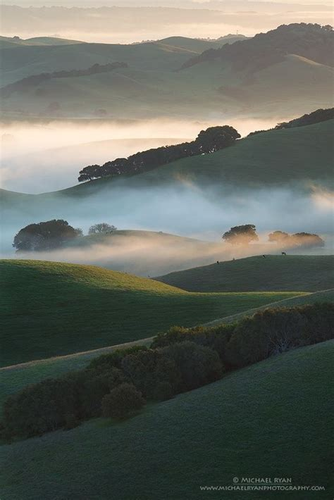 Layers Light And Mist Foggy Rolling Hills View From Sonoma Marin Landscape