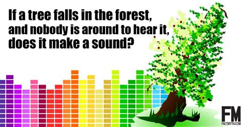 if a tree falls in the forest on the border between the deaf and hearing worlds books if a tree falls in a forest and no one can hear it it
