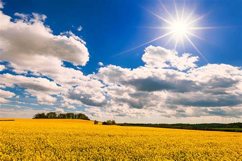 Landscape Photography With Sun Where Did The Go Dorset Countryside Usa