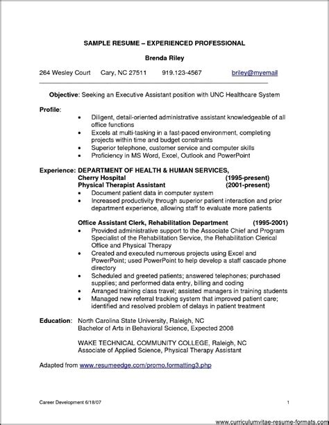 exle of professional resumes professional resume sles for it experienced free