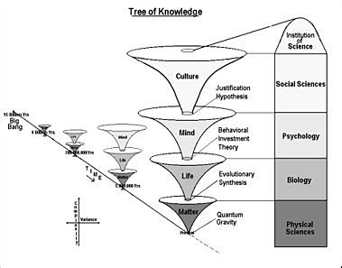 Third Degree A Novel tree of knowledge system