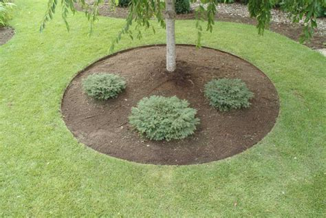 decorative edging pictures landscape edging ideas picture design ideas