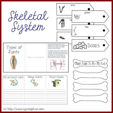 Skeletal System Worksheet by Skeletal System Worksheet Images