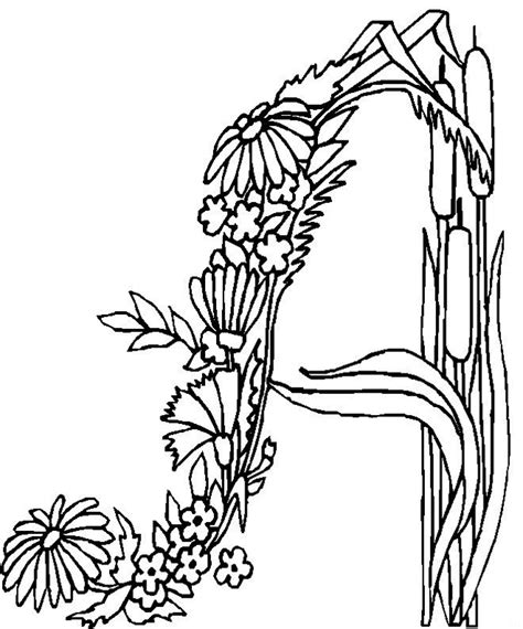 intricate designs to color az coloring pages