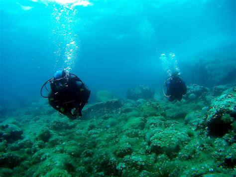 blue dive centre blue diving center halkidiki