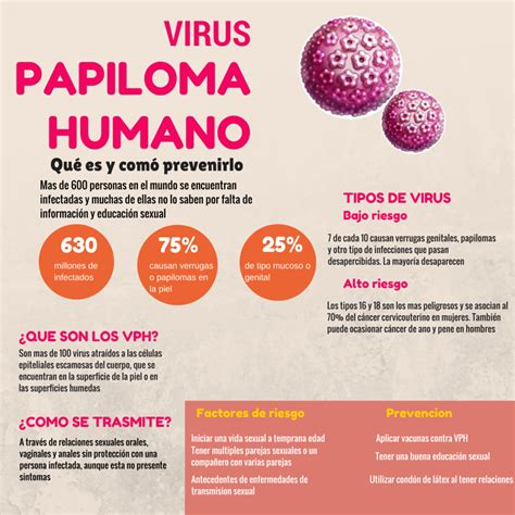 virus del papiloma humano vph fotos virus del papiloma humano vph red de apoyo los