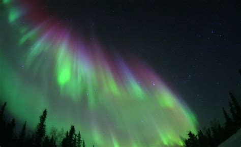 whitehorse yukon northern lights holidays from singapore best places to see the northern