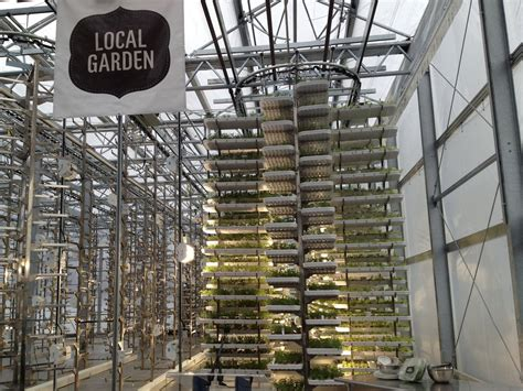 commercial model vancouver urban vertical farm opens in vancouver 171 agricoltura urbana