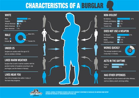home security store presents characteristics of a burglar