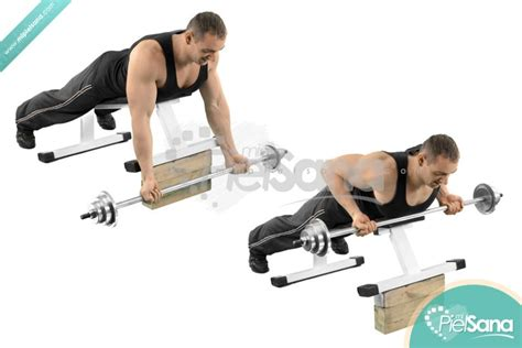bench barbell row image gallery incline barbell row