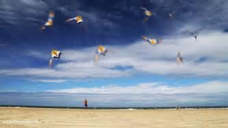 Animated kite gifs inspiration now