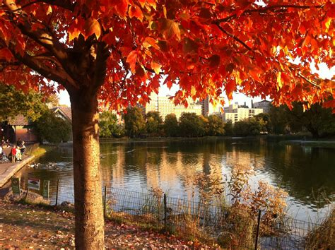 how to fall in how to talk about fall weather in spanish living language