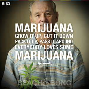 Bill murray quotes marijuana quotesgram