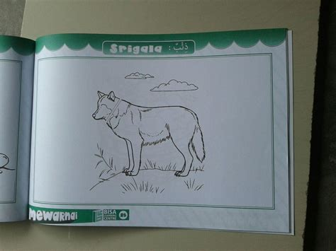 Bercerita Sambil Asyik Belajar Membaca Soft Cover buku anak belajar bahasa arab sambil mewarnai