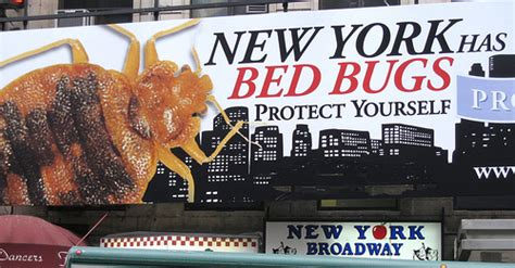 Bed Bugs New York City by Bed Bugs In New York City City Of The Brave