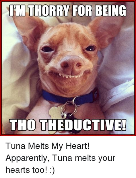 Tuna Meme - tuna meme 28 images tuna dog meme memes tuna the dog