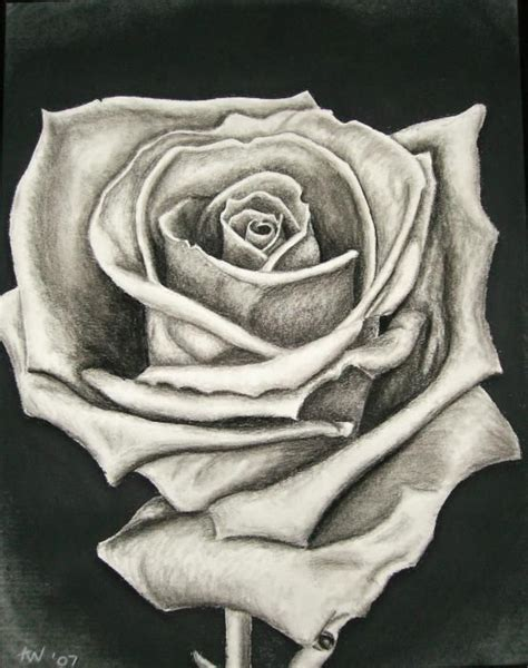 how to tattoo a realistic rose best 25 drawings ideas on how to draw