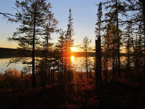sunset river trees wallpapers hd desktop  mobile