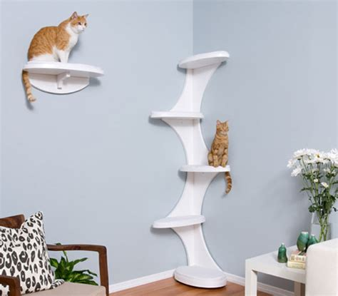 Corner Cat Shelf by Decorative Furniture For Cat Cat Tower And Shelf