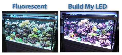 T5 Light Fixtures For Aquariums Image Of Best T5 Light T5 Lighting Fixtures For Aquariums