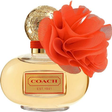 Minyak Wangi X Limited 17 best images about fragrances and smelly goods on