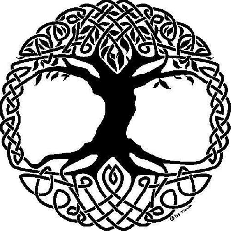 trees symbolism celtic symbol tree of paganism photo 15403296