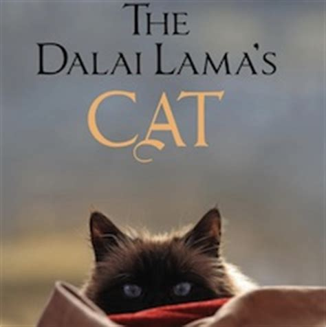1401943276 the dalai lama s cat and the dalai lama s cat by david michie bleeding espresso