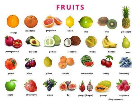 3 fruit types let s learn together types of fruits