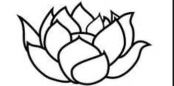 Outline Of Lotus Flower Simple Black Outline Lotus Design
