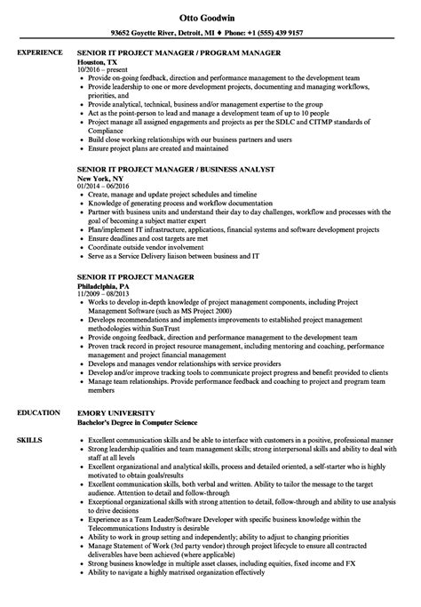 Senior It Project Manager Resume by Senior It Project Manager Resume Sles Velvet
