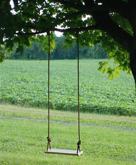 rope tree swings best 25 tree swings ideas on pinterest kids swing