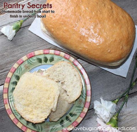Pantry Bread by Pantry Secrets Review Bread From Start To Finish