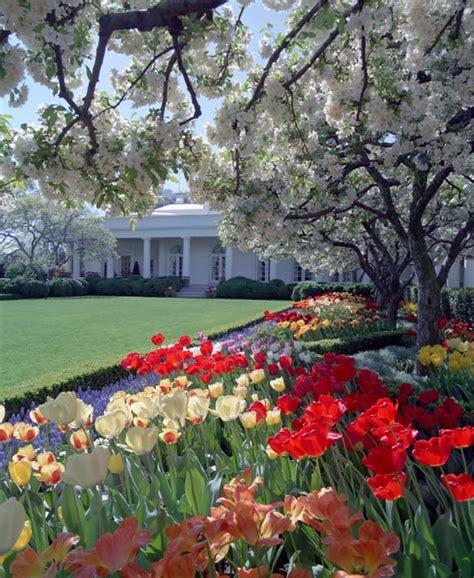 white house rose garden white house rose garden president ronald reagan
