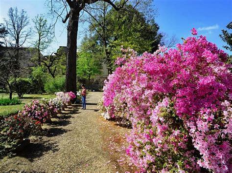 giardino semplici giardino dei semplici