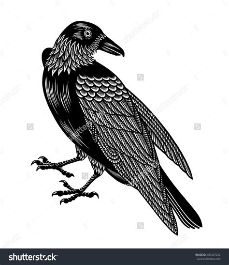 black crow tattoo black design
