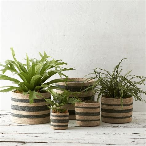 Basket Planter by Jute Basket Planter Terrain