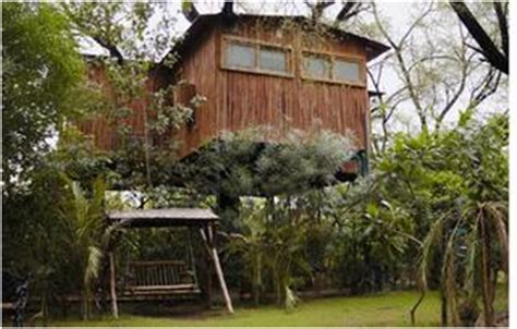 Treehouse Cottages Near Jaipur by Iitbhuglobal Org The Chronicle The Tree House Resort In