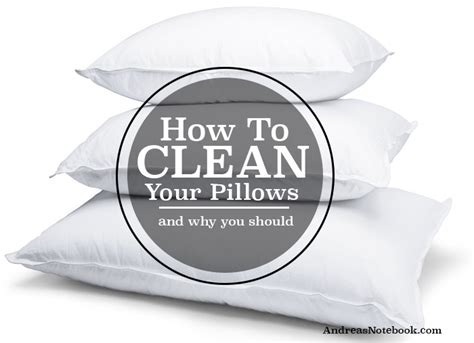 How Often Should You Wash Your Pillows by 5 Disgusting Things You Forget To Clean Andrea S Notebook