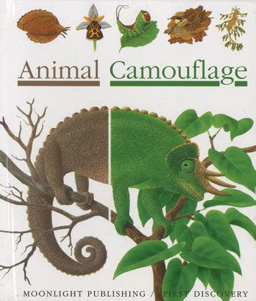 animal camouflage independent publishers group