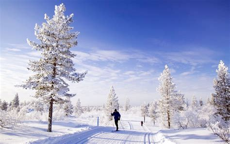 best place to stay in lapland at lapland finland best places to spend travel