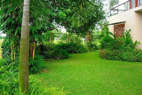 in house garden design house garden designs in sri lanka house design