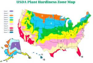 map us planting zones a container planting how to that will launch any container gardening idea
